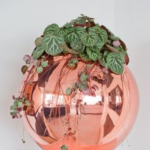 Rose Gold Sphere Planter