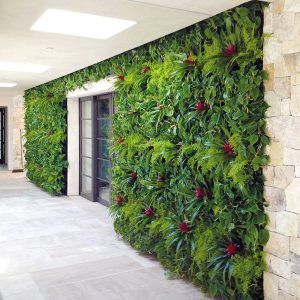 Living Green Wall