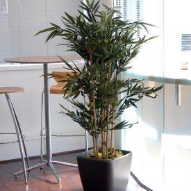 Bamboo QR43 Graphite