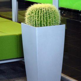 Cactus Ball LE30 Silver