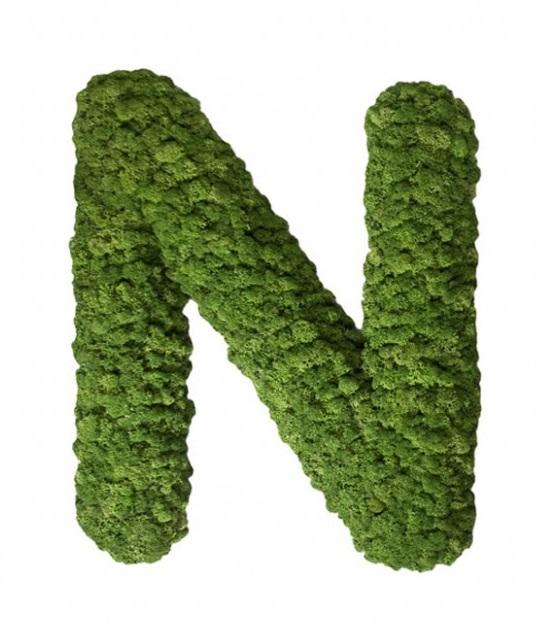 Moss Letter N