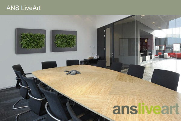 The Green Office Living Walls