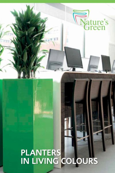 The Green Office Natures Green Planter