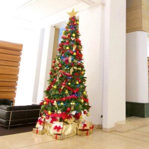 Install Decorate Christmas Tree