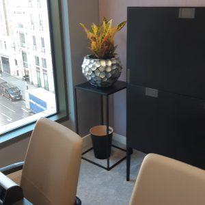Office Plants London 4