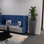 Office Plants Glasgow (2)