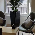 Office Plants Glasgow (4)