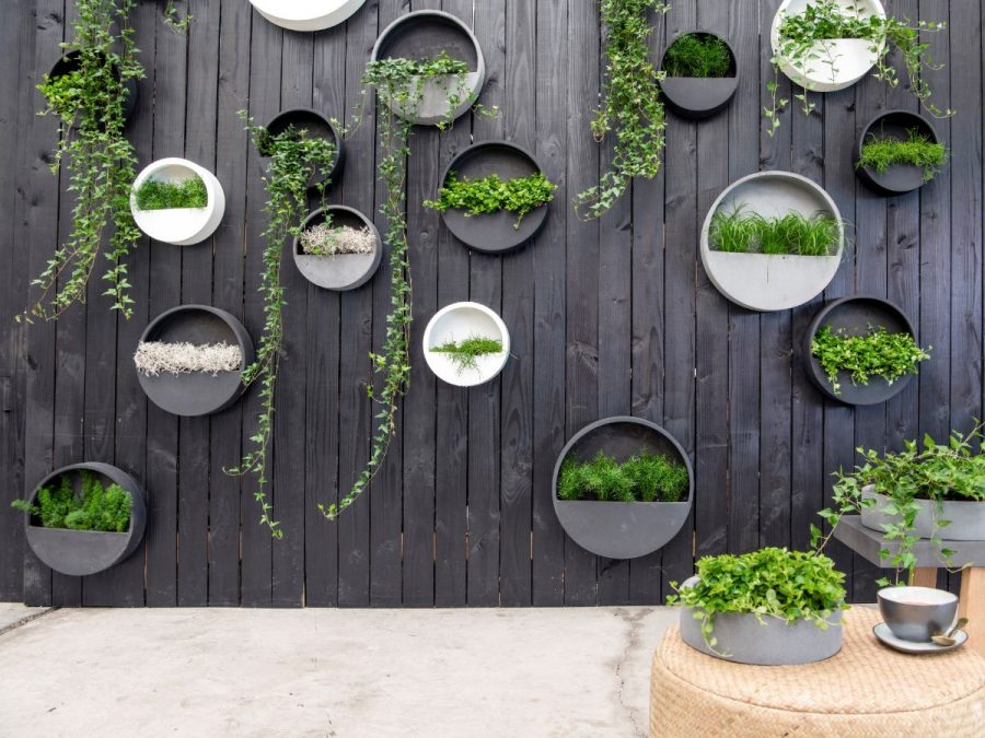 Disk Planters (1)