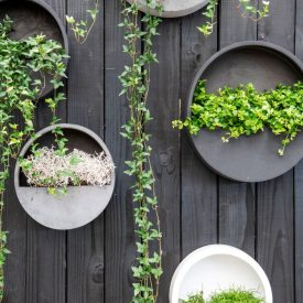 Disk Planters