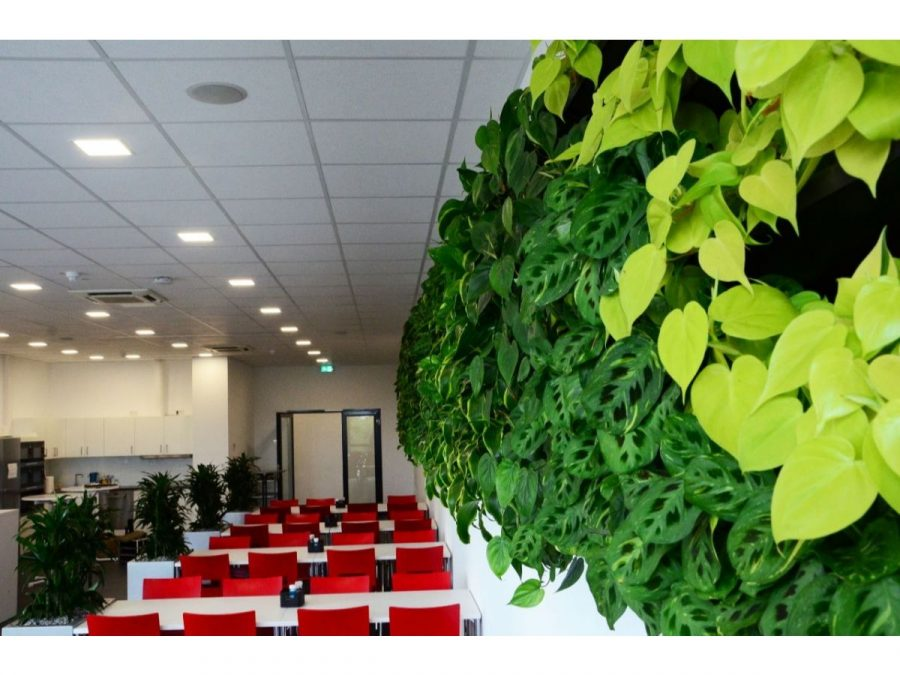 Living Wall Cafe