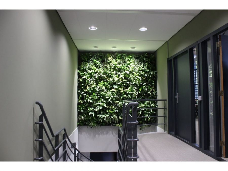 Living Wall Stairs.169