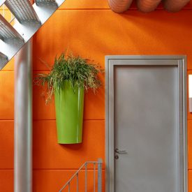 Primus Wall Planter