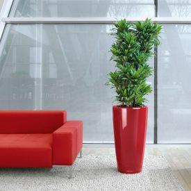 Rondo Planter