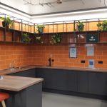 Lancaster Mill Live Plants (2)