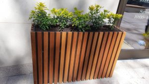 Planters In London2