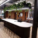 Hanging Plants Refurbished Building1