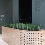 Office Plants Install Manchester (5)